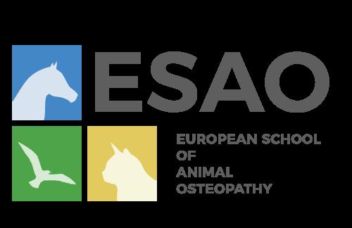 Logo de l'école ESAO