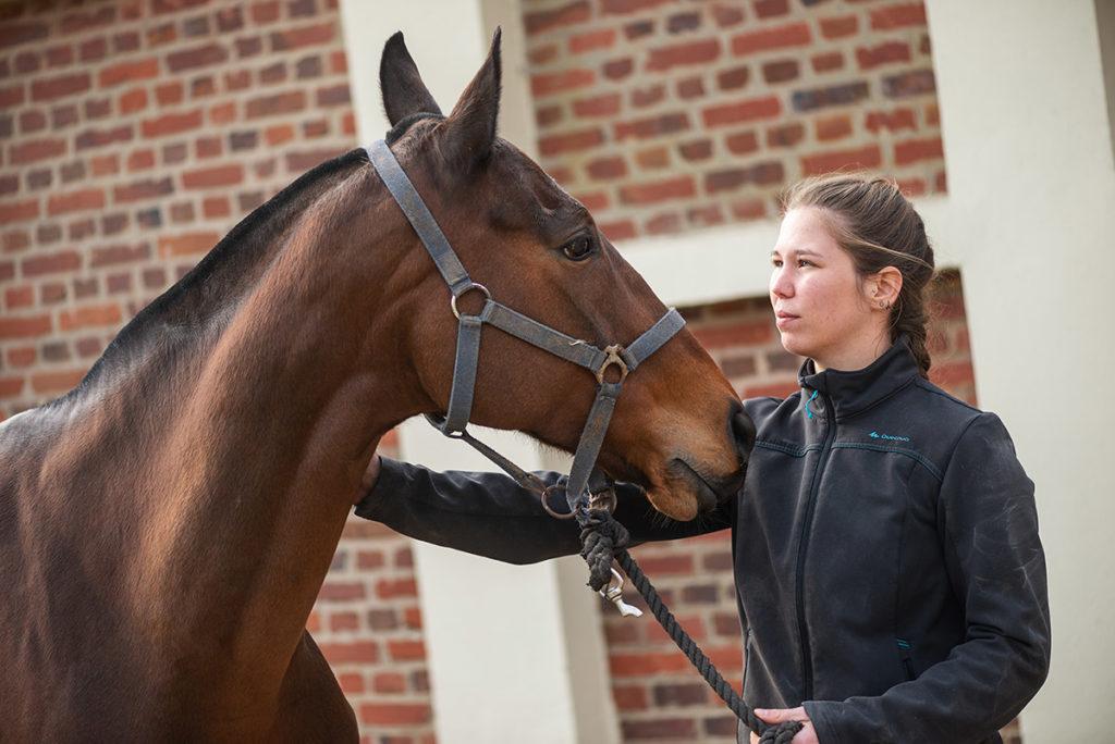 Jeune femme qui s'occupe d'un cheval